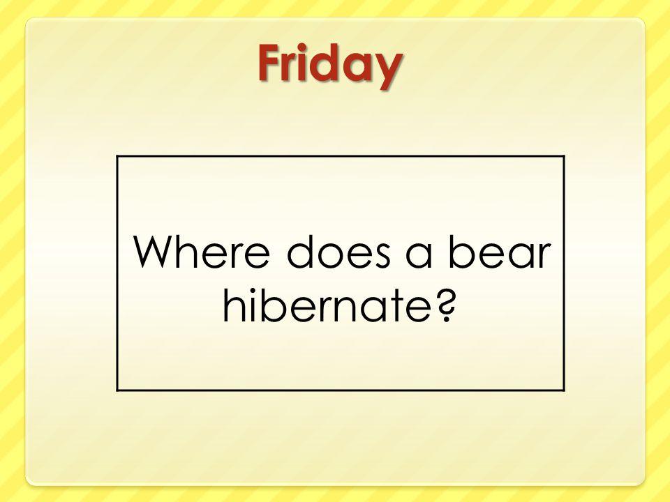Where does a bear hibernate