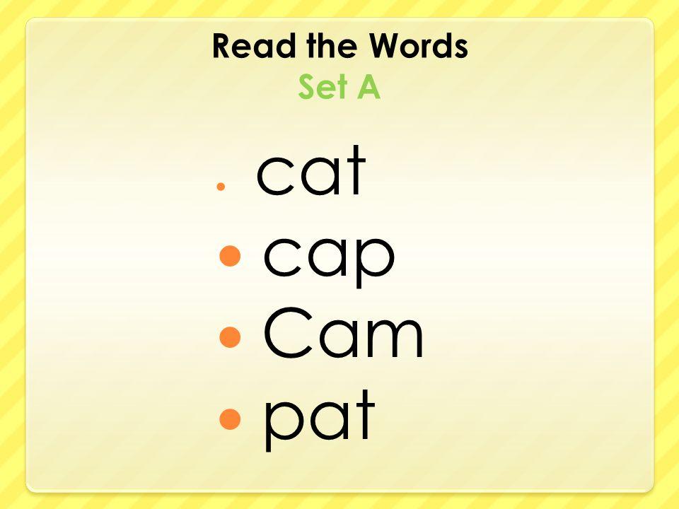 Read the Words Set A cat cap Cam pat