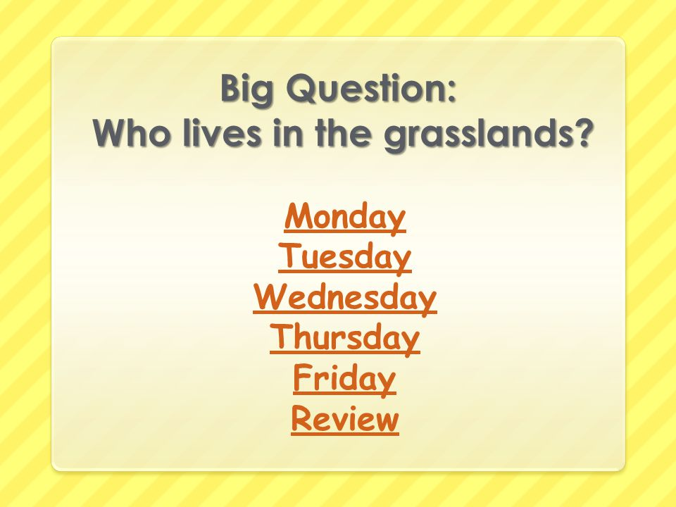 Big Question: Who lives in the grasslands