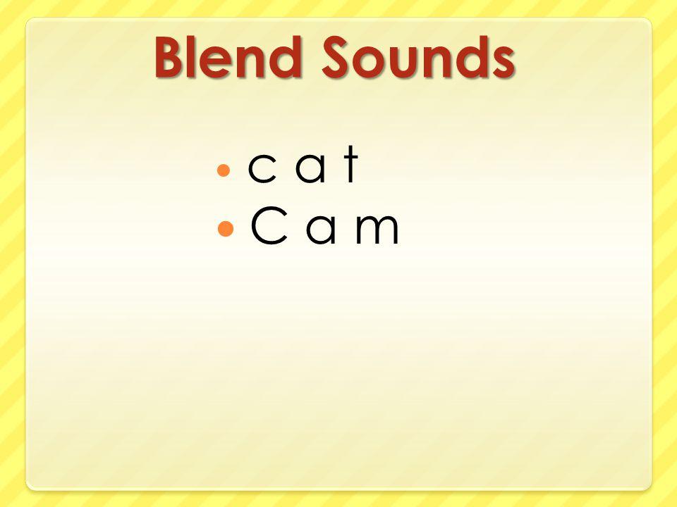 Blend Sounds c a t C a m