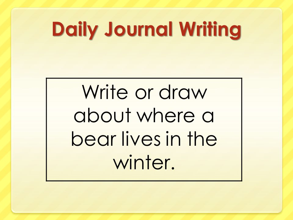 Write or draw about where a bear lives in the winter.