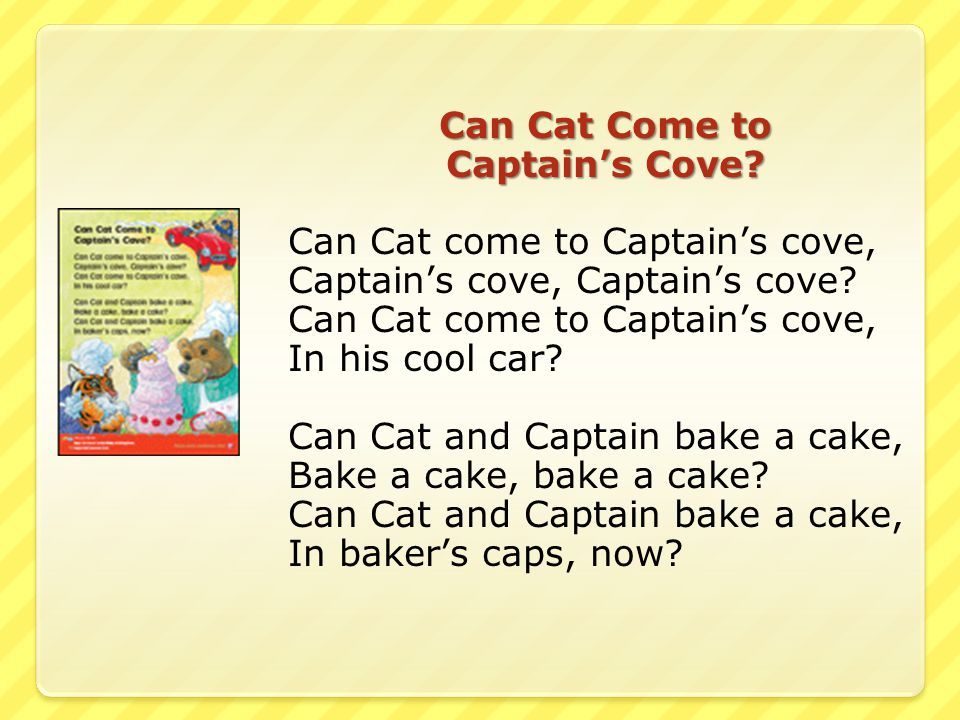 Can Cat Come to Captain's Cove