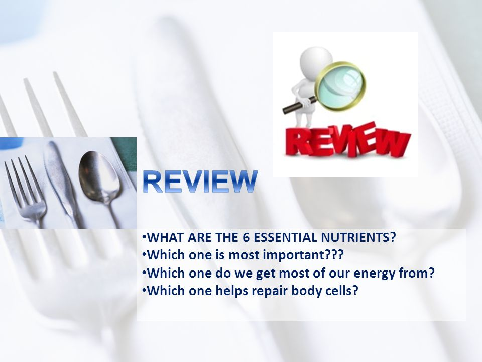 REVIEW WHAT ARE THE 6 ESSENTIAL NUTRIENTS
