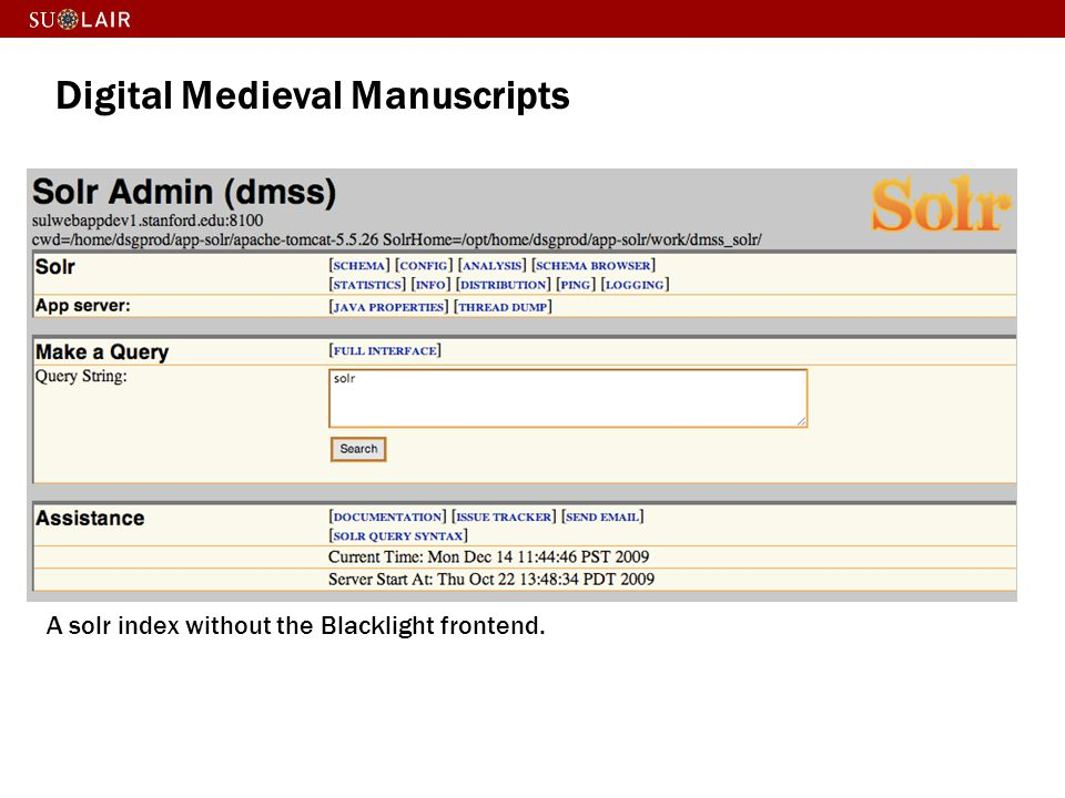 Digital Medieval Manuscripts
