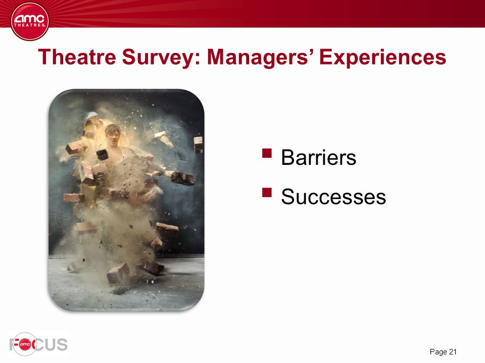 Theatre Survey: Managers' Experiences