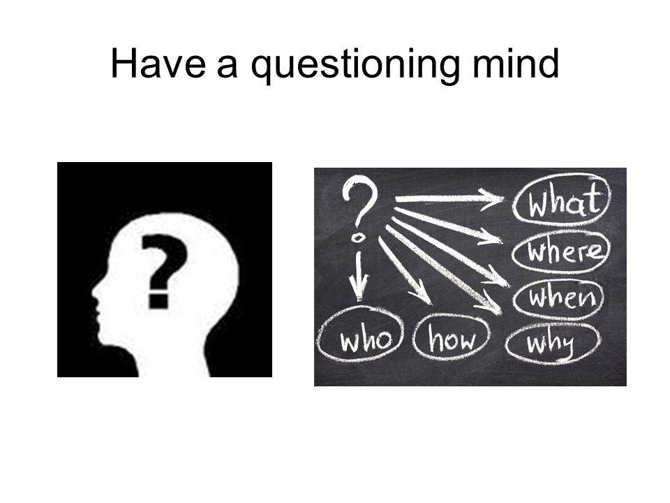 Have a questioning mind