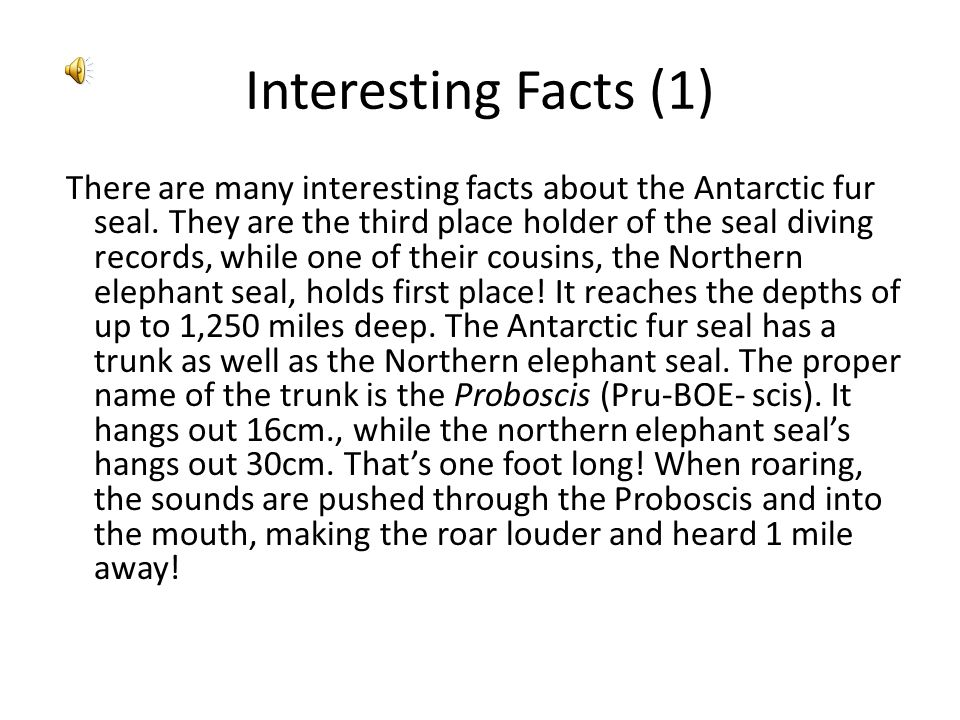 Interesting Facts (1)
