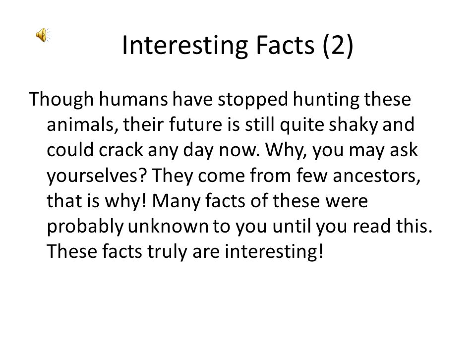 Interesting Facts (2)