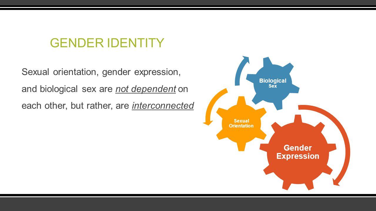 GENDER IDENTITY Gender Expression. Sexual Orientation. Biological Sex.