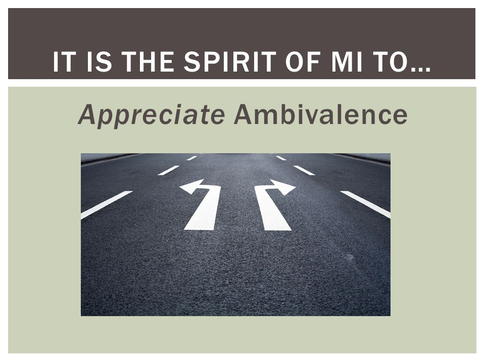 It is the Spirit of MI to…