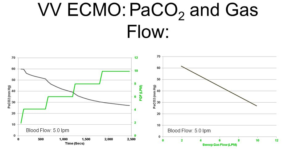 VV ECMO: PaCO2 and Gas Flow:
