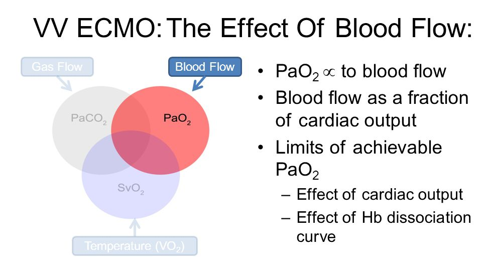 VV ECMO: The Effect Of Blood Flow: