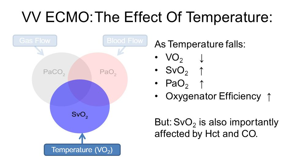 VV ECMO: The Effect Of Temperature: