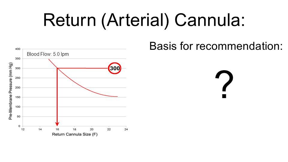 Return (Arterial) Cannula: