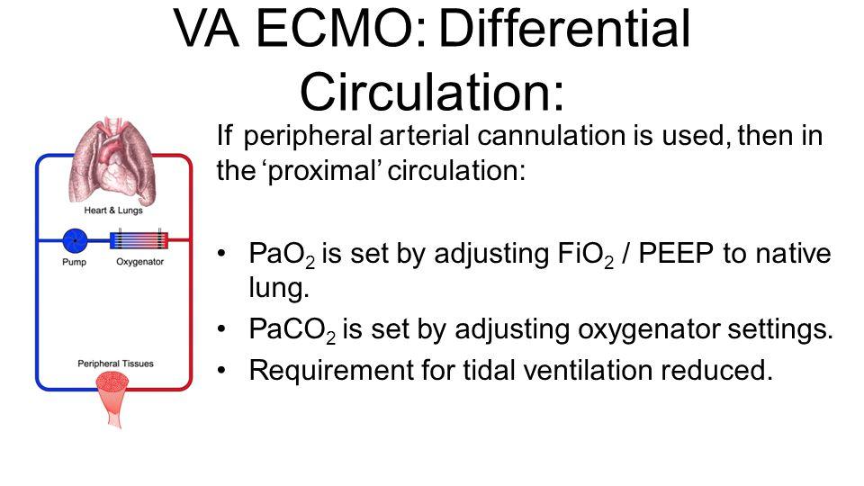 VA ECMO: Differential Circulation: