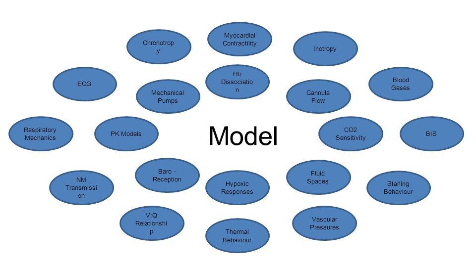 Model Myocardial Contractility Chronotropy Inotropy ECG