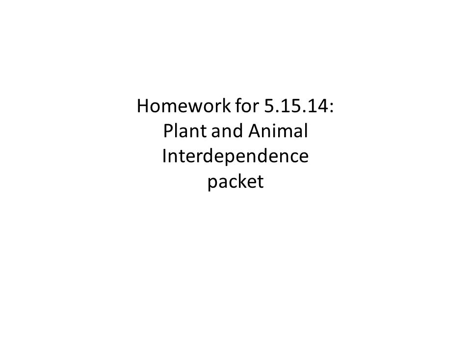 Homework for 5.15.14: Plant and Animal Interdependence
