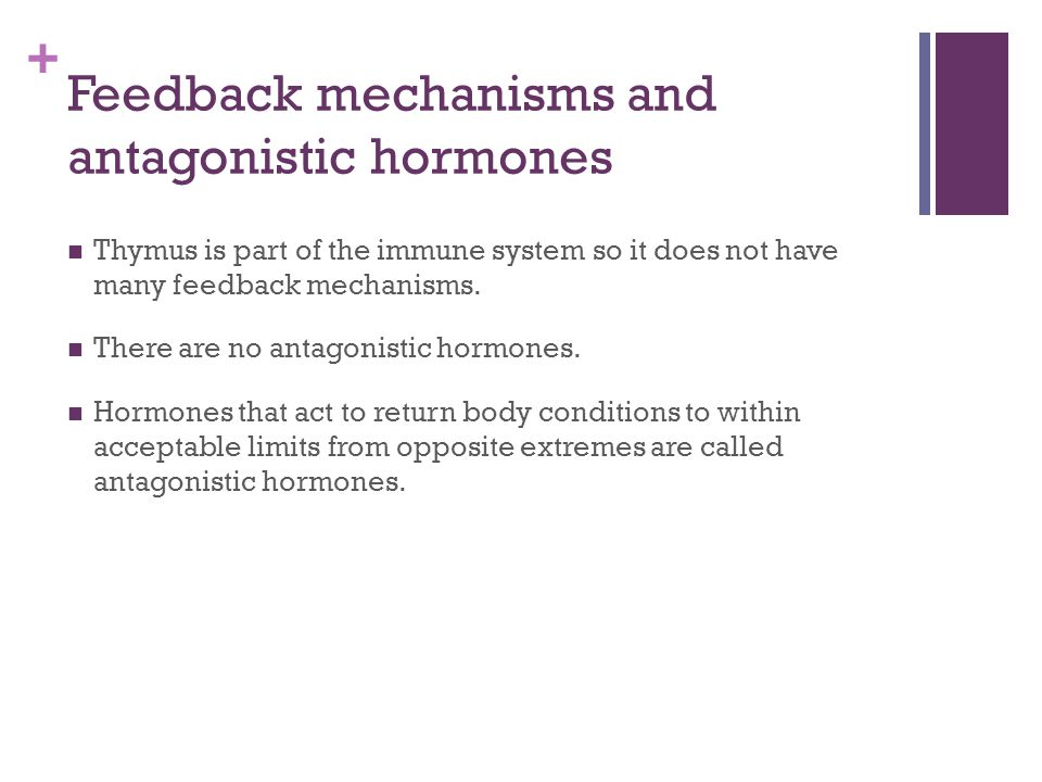 Feedback mechanisms and antagonistic hormones