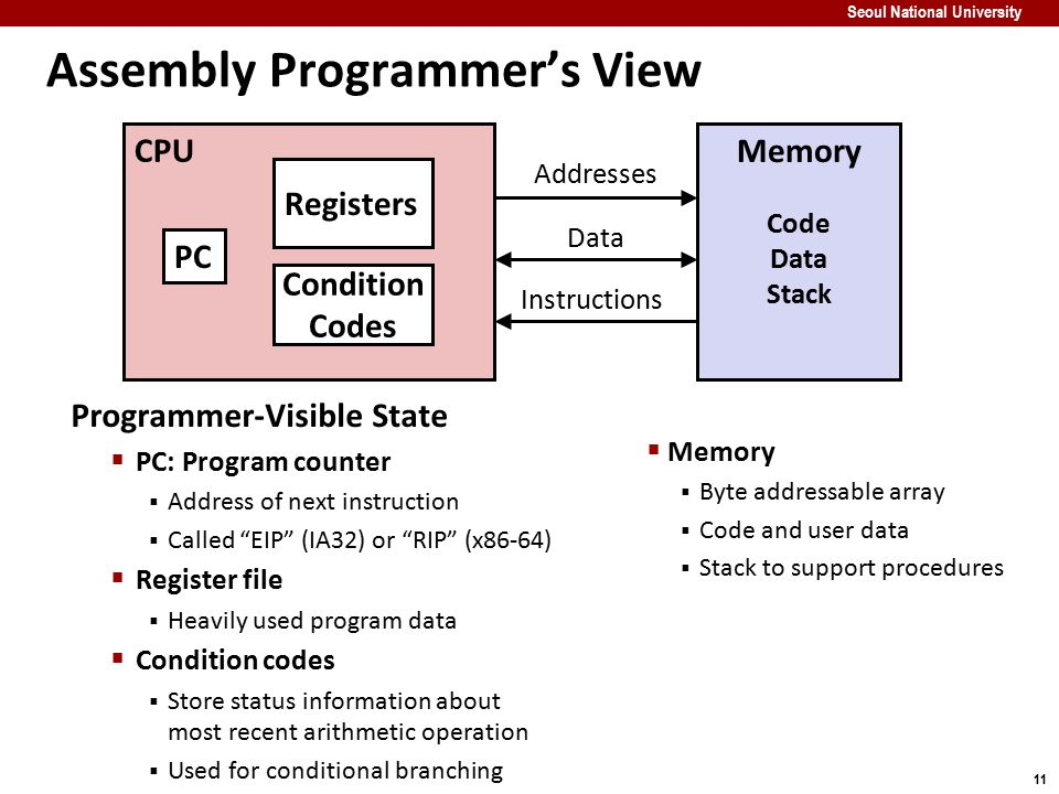 Assembly Programmer's View
