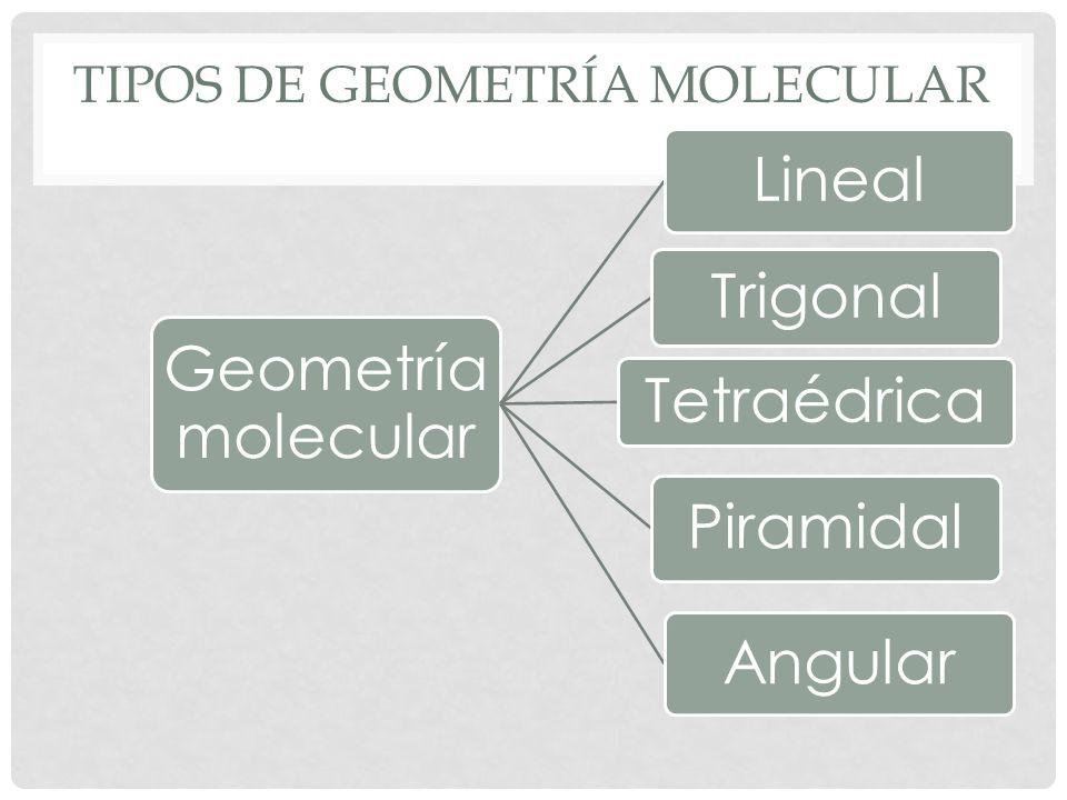 Tipos de geometría molecular