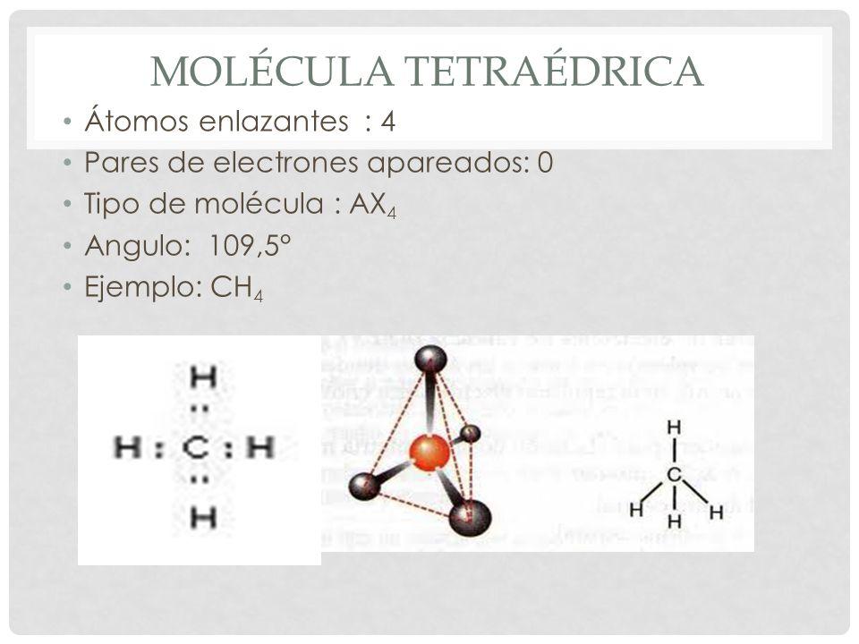 Molécula tetraédrica Átomos enlazantes : 4