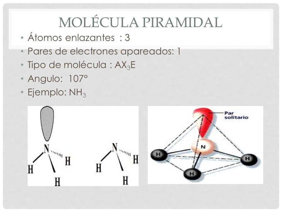 Molécula piramidal Átomos enlazantes : 3
