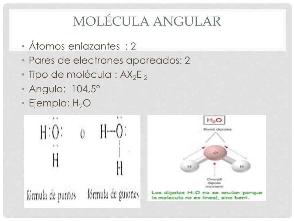 Molécula angular Átomos enlazantes : 2