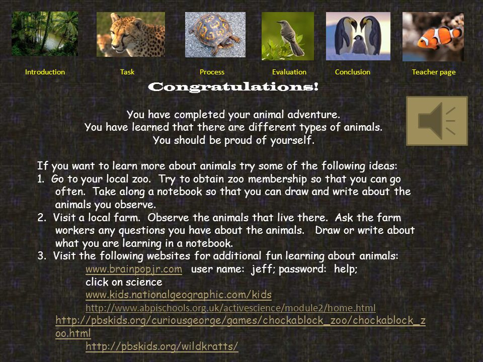 Congratulations! You have completed your animal adventure.