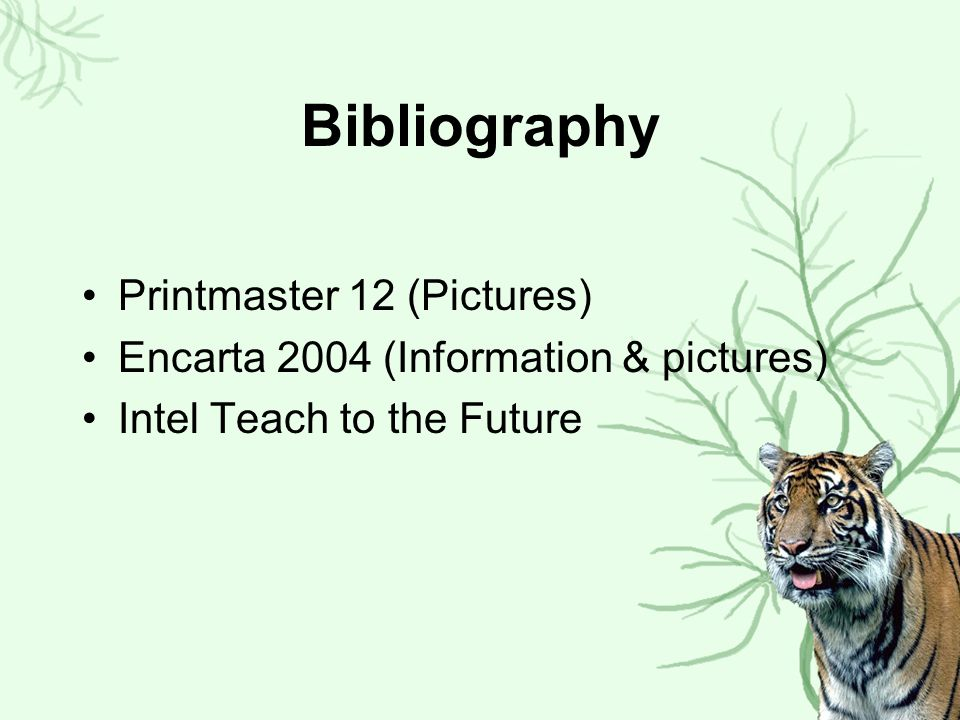Bibliography Printmaster 12 (Pictures)