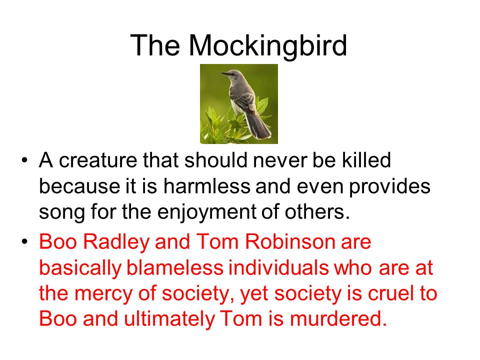 The Mockingbird A creature that should never be killed because it is harmless and even provides song for the enjoyment of others.