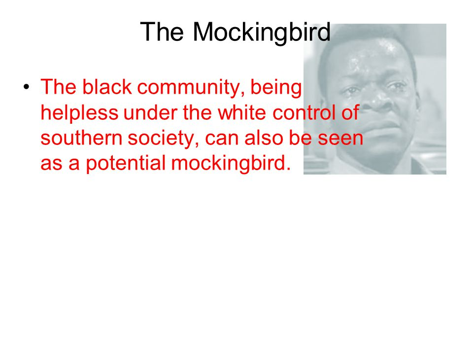 The Mockingbird The black community, being helpless under the white control of southern society, can also be seen as a potential mockingbird.