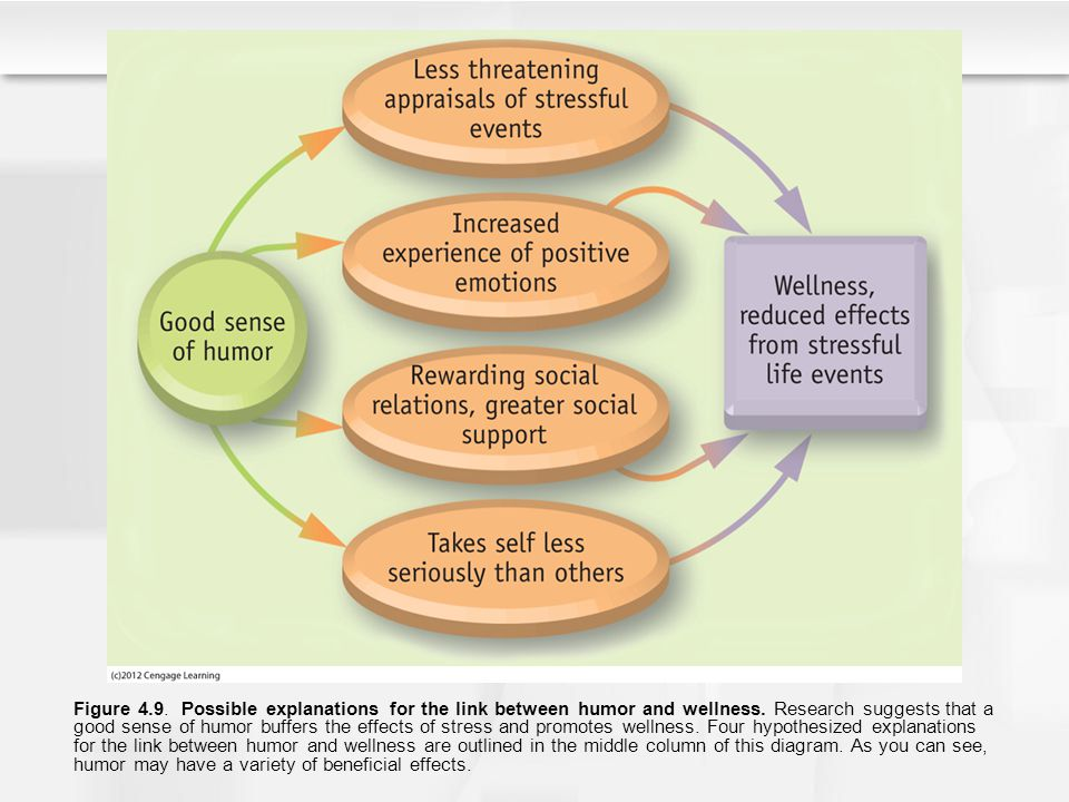 Figure 4.9. Possible explanations for the link between humor and wellness.