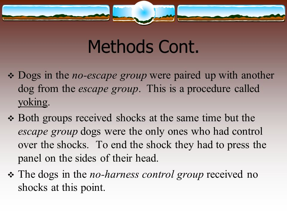 Methods Cont. Dogs in the no-escape group were paired up with another dog from the escape group. This is a procedure called yoking.
