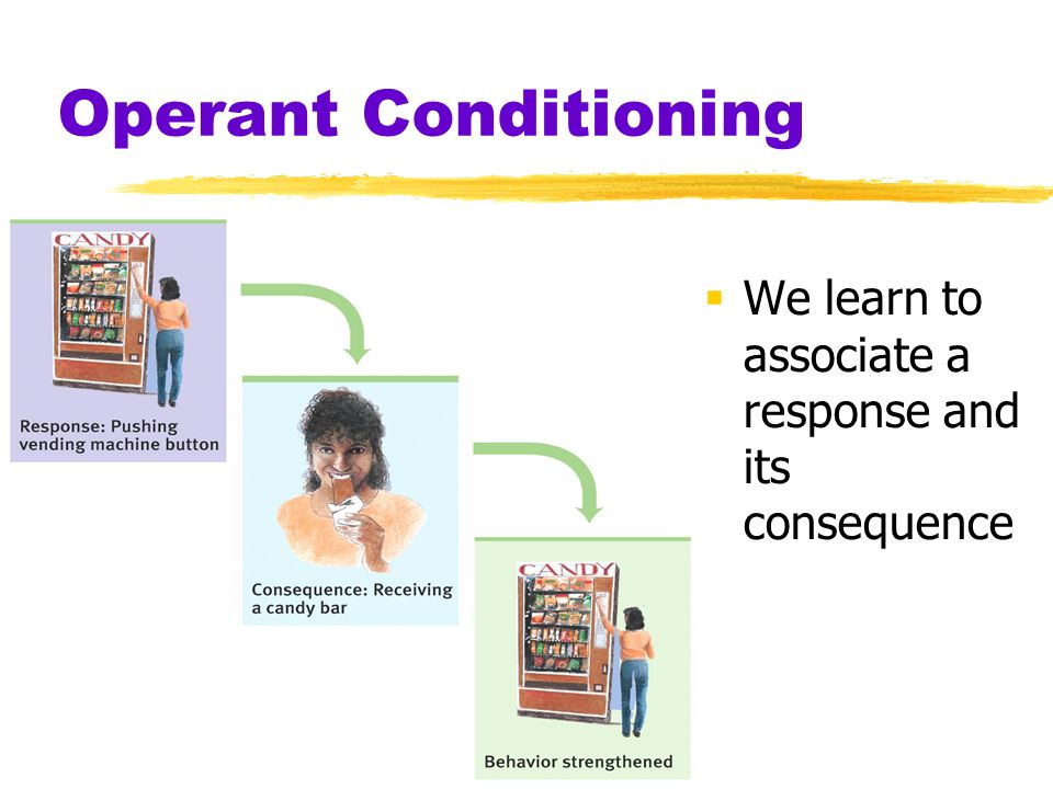 Operant Conditioning We learn to associate a response and its consequence