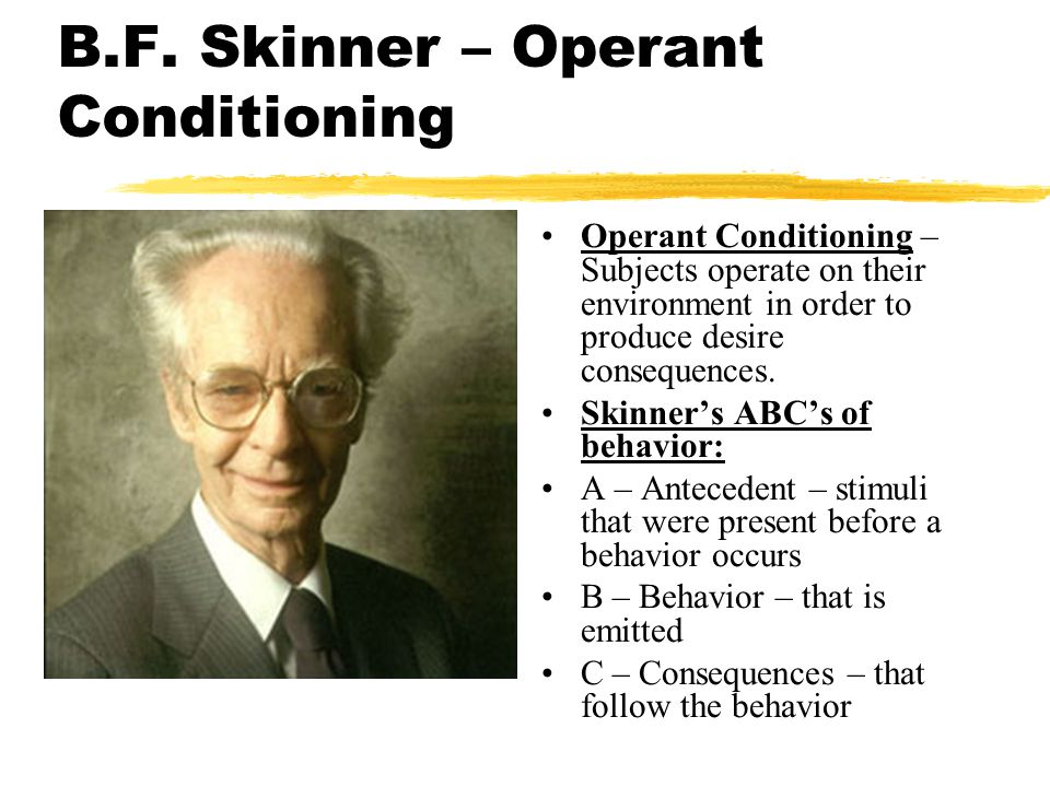 b f skinner operant conditioning Operant conditioning is a theory of learning that generally follows thorndyke bf skinner coined the term operant conditioning to refer to his theory of how if you would like a little more in-depth information regarding operant and classical conditioning, i.