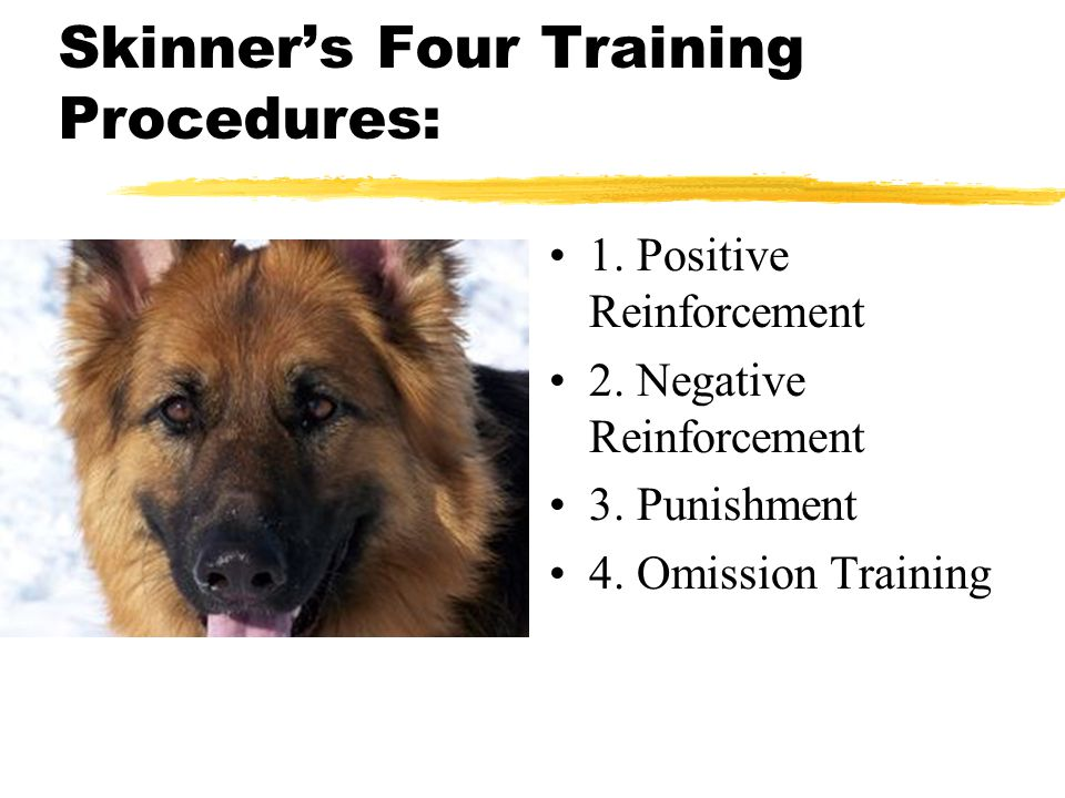 Skinner's Four Training Procedures: