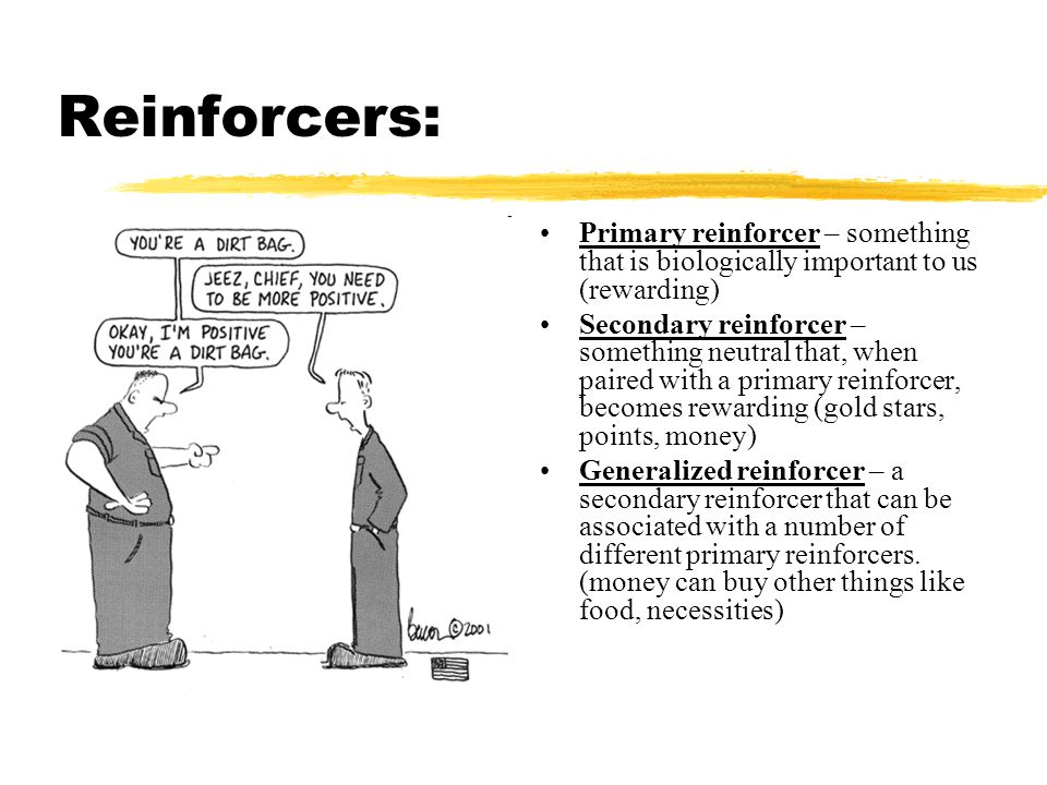 Reinforcers: Primary reinforcer – something that is biologically important to us (rewarding)