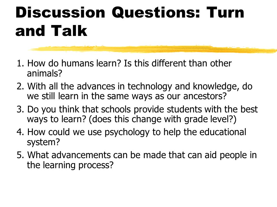 Discussion Questions: Turn and Talk