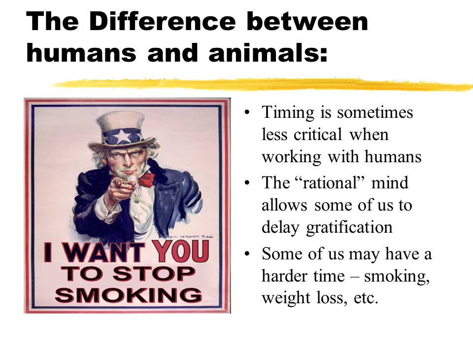 The Difference between humans and animals: