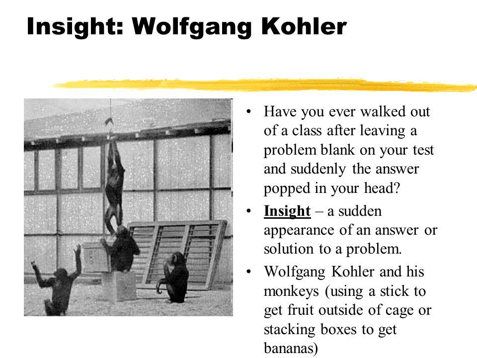 Insight: Wolfgang Kohler