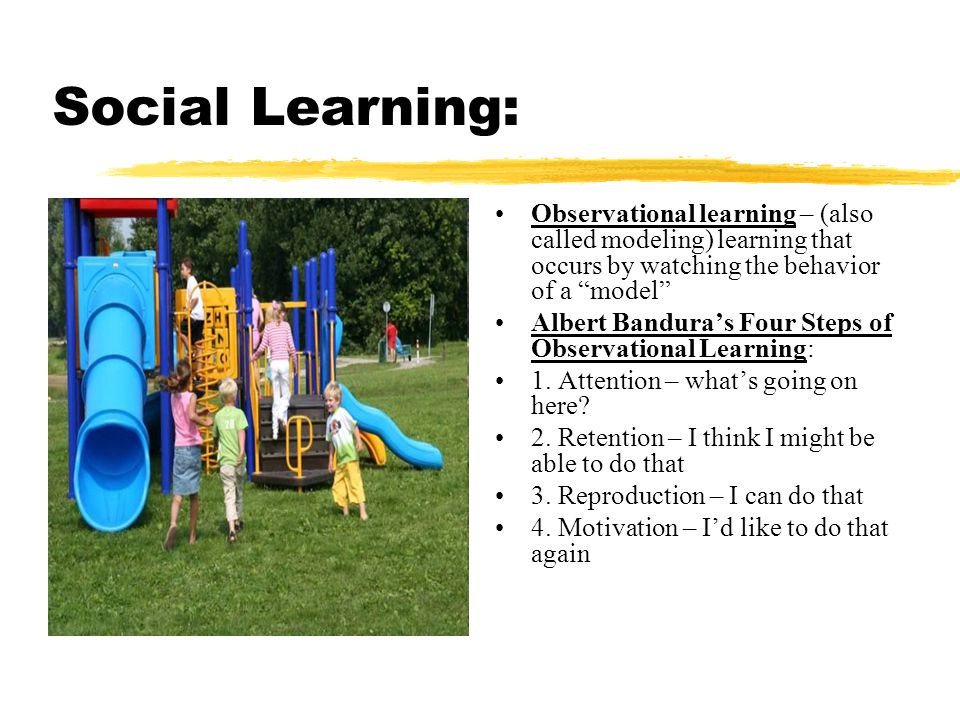 Social Learning: Observational learning – (also called modeling) learning that occurs by watching the behavior of a model