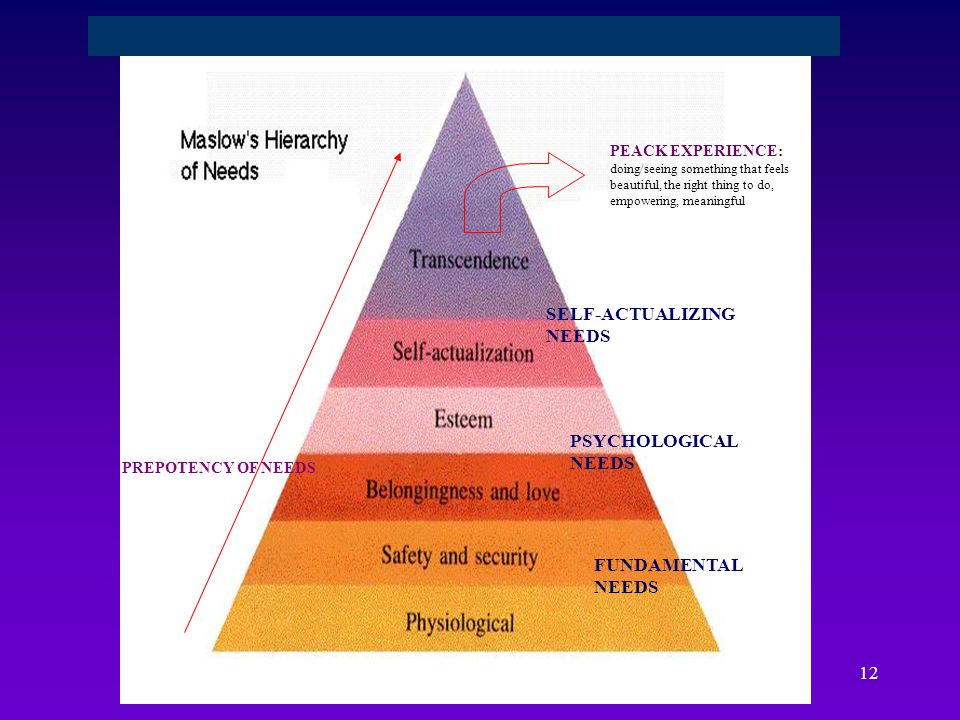 SELF-ACTUALIZING NEEDS PSYCHOLOGICAL NEEDS FUNDAMENTAL NEEDS