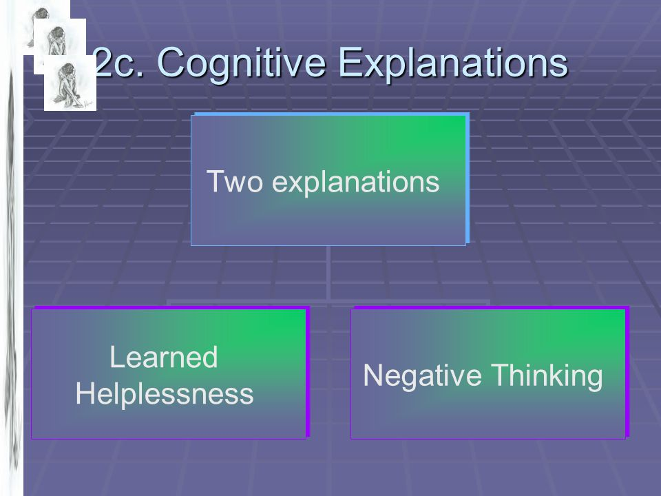 2c. Cognitive Explanations