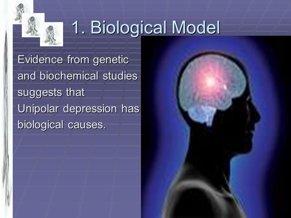 1. Biological Model Evidence from genetic and biochemical studies
