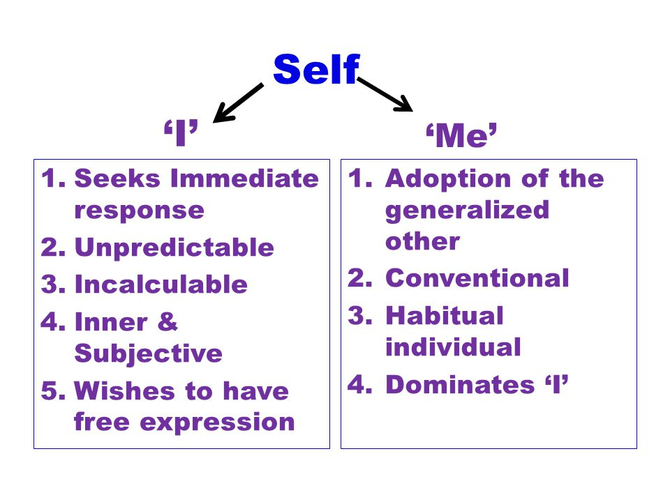 Self 'I' 'Me' Seeks Immediate response Unpredictable Incalculable