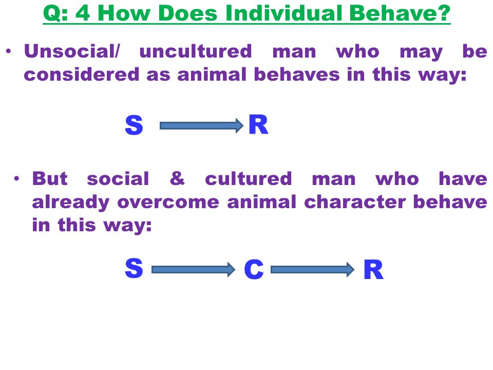 Q: 4 How Does Individual Behave