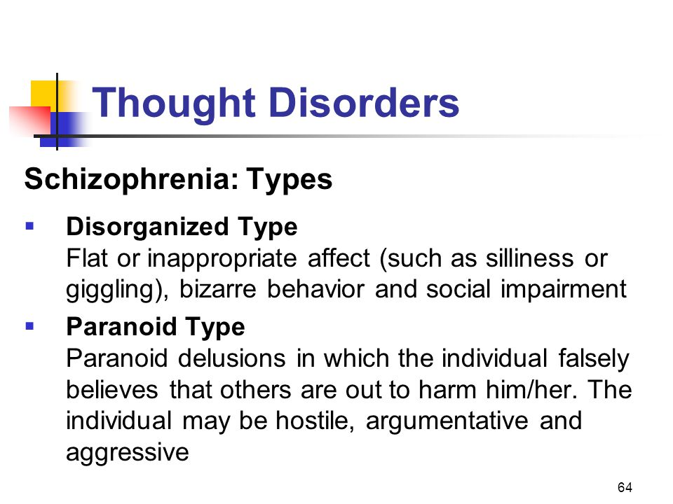 Thought Disorders Schizophrenia: Types Disorganized Type Paranoid Type