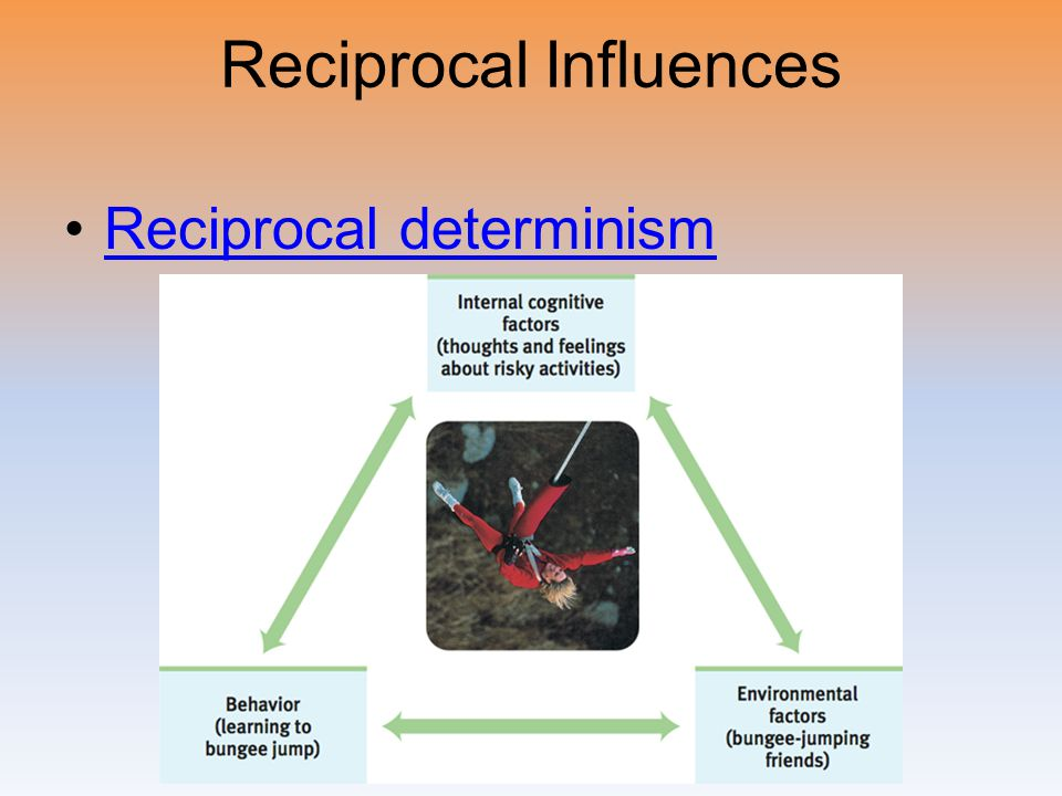 Reciprocal Influences