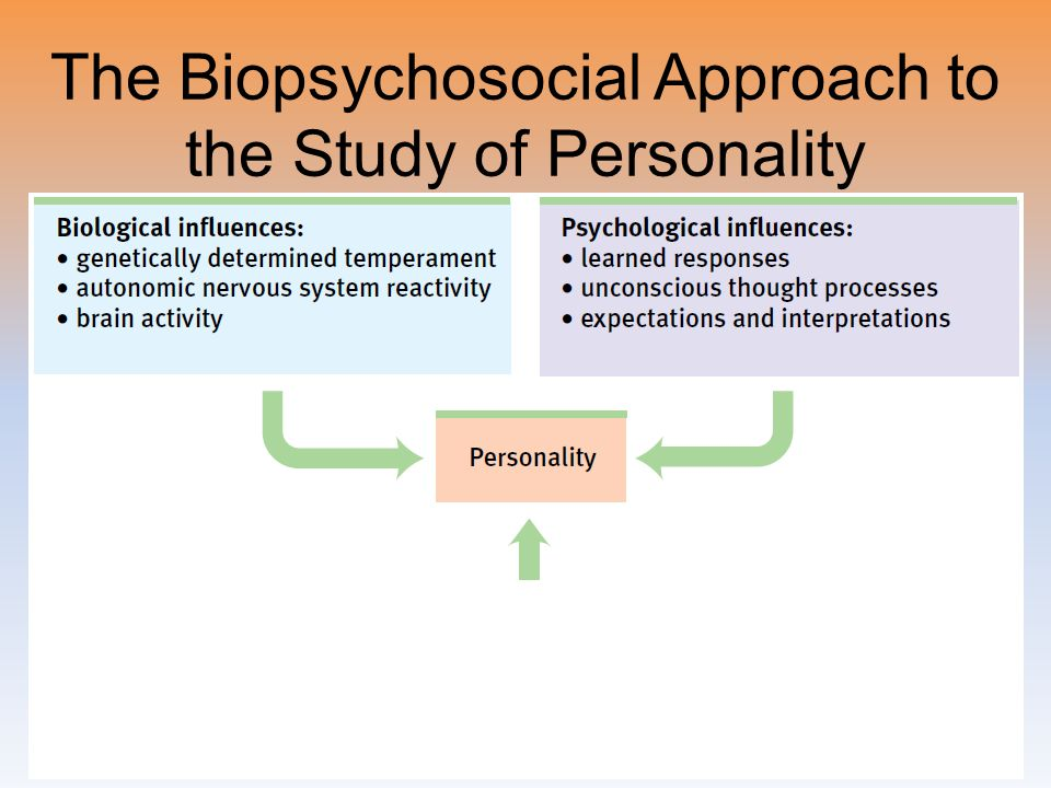 The Biopsychosocial Approach to the Study of Personality