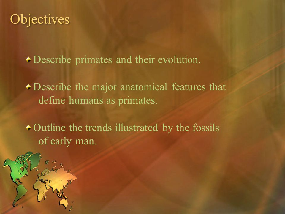 Objectives Describe primates and their evolution.